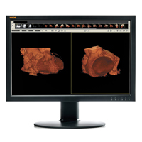 WIDE CL24 LCD Monitor